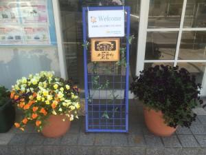 Oiso open garden