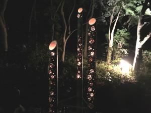 koyo bamboo